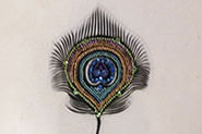 PEACOCK FEATHER WITH DIAMONTE
