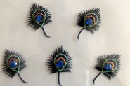 5 PEACOCK FEATHERS